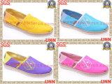 Chaussures de toile coloré (SD6175)