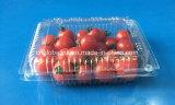 Recipiente di plastica a gettare dell'animale domestico per frutta fresca 350 grammi