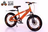 자전거 아이들 자전거 아이 자전거, MTB 자전거가 새로운 디자인에 의하여 농담을 한다