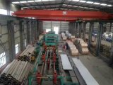 feuilles de l'acier inoxydable 304L dans la fabrication de la Chine de forme courante