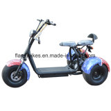 1000W 3つの車輪が付いている電気ゴルフスクーター
