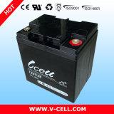 Caldo! Vcell Brand 12V28ah Maintenance Free Accumulator Battery