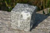 Pietra per lastricati del granito grigio-chiaro per il progetto esterno
