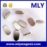 네오디뮴 희토류 NdFeB 영원한 타원형 자석 (MLY067)