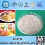 Gelatina vendedora caliente para el alimento / la aplicación industrial / médica