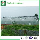 Invernadero plástico del Multi-Palmo de la agricultura para las flores