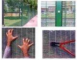 La rete metallica saldata galvanizzata ricoperta PVC