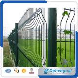 Порошок PVC покрыл гальванизированную сваренную сталью загородку ячеистой сети (DHF)