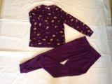 Женщины самонаводят пижамы Bathrobes одежд