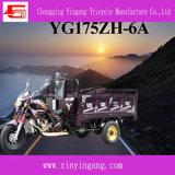 Gas Engineの3 Wheel Motorcycle