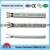 Certificat flexible normal du câble électrique 2X10mm2 SAA de fil de l'Australie TPS