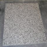 G603カウンタートップの普及した販売の白の花こう岩
