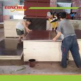 A madeira compensada enfrentada película Shuttering dos moldes repetida usa 15-20 vezes