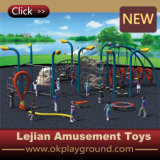 Octangle Grimpeur enfants Playground Equipment (P1201-19)