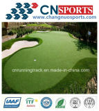 인공적인 잔디 /Park/Golf/Swimming 수영장을 정원사 노릇을 하기를 위해 최신 판매