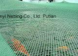 Сеть крышки пруда HDPE