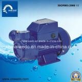 Lq série Phase unique de nettoyer la pompe à eau électrique pour utilisation à domicile de 1 pouce (0,37 kw/0,55 kw/0,75 kw)