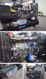 Generador de energía eléctrica de 10kw-250kw a 60Hz Ricardo Generador Diesel