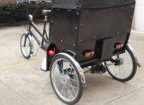 Förderung-Pedal Pedicab Rikscha (VS-T301)