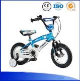 Populäres Baby-Fahrrad-Fahrrad des Entwurfs-Kind-Fahrrad-/12 Zoll kleines