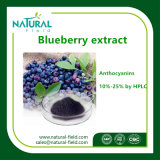 100%の自然なプラントエキスのブルーベリーのエキス25%のアントシアニジン