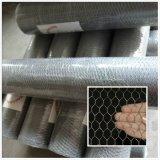 PVCによって塗られる電流を通された六角形の金網の網