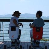 Besichtigendrei Rad-faltbarer elektrischer Roller