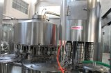 Petite installation de mise en bouteille remplissante potable mis en bouteille automatique de l'eau minérale