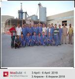 Planta de fabricación de polvo de yeso el yeso de 100 mil llave en mano de T.