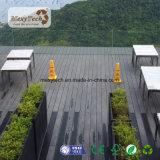 Revestimento ao ar livre impermeável de Brown WPC da grão de madeira quente da venda