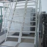 Scaletta di alluminio diritta per l'armatura