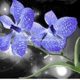 la diffusione dell'orchidea di lepidottero 100%Polyester 3D ha stampato il tessuto per l'insieme dell'assestamento