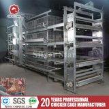 Geflügel steuern Halle-Geräten-Ei-Huhn-Behälter für Verkauf