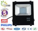 フラッドライト5年のの良質保証30W SMD LEDの、30W LEDのフラッドライト