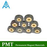 D60 Magneet de In entrepot van het Neodymium met Magnetisch Materiaal NdFeB