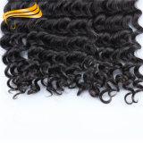 حارّ يبيع نوع نساء جميل [برزيلين] شعر إمتدادات ريمي