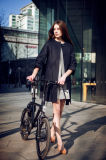 Tsinova 2017 elektrisches Fahrrad Veloup Ansteuersystem
