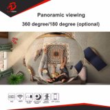 Netz-/Digital WiFi CCTV-360degree panoramische IP-Kamera vom CCTV-Kamera-Lieferanten