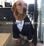 O casamento do animal de estimação do Ocidental-Estilo veste o terno do cão para cães do cavalheiro