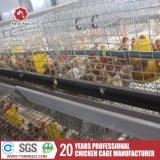 De Verkoop van de Kooi van de Kip van de Laag van de batterij voor het Landbouwbedrijf van het Gevogelte
