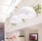 Lustre moderne d'éclairage de lampe pendante de Gardensky grand pour le projet