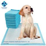 Almofada pequenina de formação para grandes filhotes de cachorro e cães