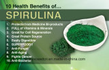 Ernährungs- und diätetisches Ergänzung Spirulina Puder