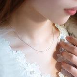 Collana dell'argento sterlina con monili femminili