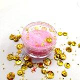 Leuchtendes buntes Kosmetik-Form-Funkeln-Stück-Funkeln-Puder für Dekoration