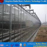 Парник тоннеля PC фабрики низкой стоимости профессиональный для томата