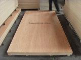2-25mm Bintangor/Okoume enchapado de madera contrachapada comercial