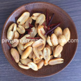 Sichuan 고추 취향 입히는 땅콩
