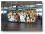 Bannière rétroéclairé PVC 440gsm du matériel numérique pour le matériel d'impression d'affiches grand format