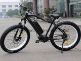 سرعة عامّة سمين إطار العجلة [ليثيوم بتّري] درّاجة كهربائيّة